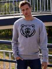 Szara bluza męska z niedźwiedziem