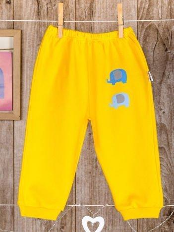 Bawełniane spodenki niemowlęce ze słonikami żółte
