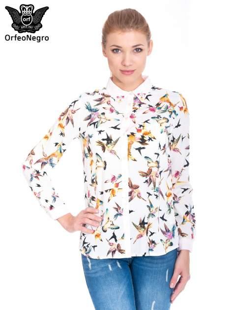 Koszula w kolibry z różowym kołnierzykiem, mankietami i listwą