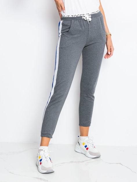 Szaro-niebieskie spodnie Hidden                              zdj.                              3