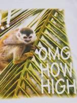 Biały t-shirt chłopięcy z małpką                                  zdj.                                  4
