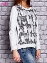 Szara bluza z motywem kotów                                  zdj.                                  3